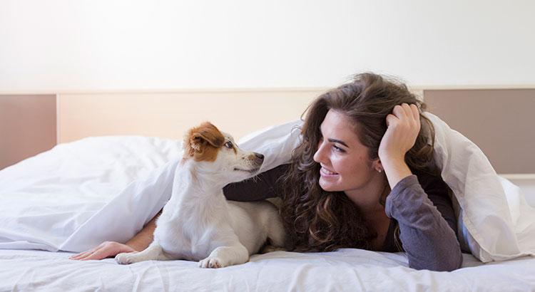 mulheres dormem melhor com cães na cama