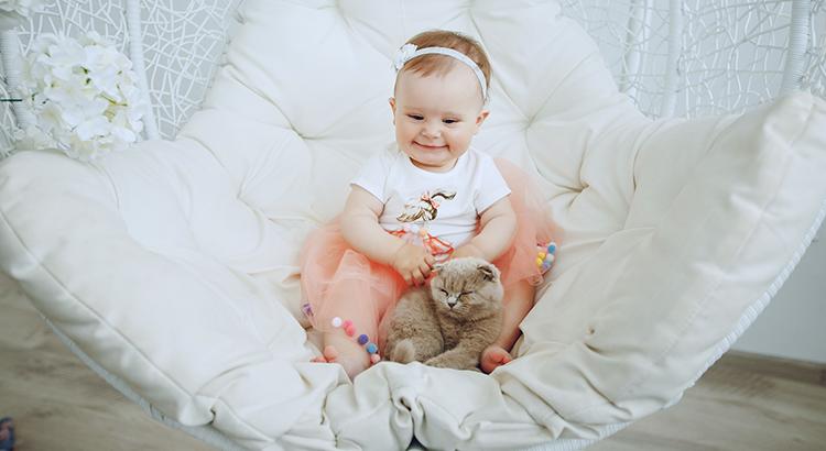 como acostumar gato e bebê