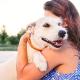 O que levar em conta antes de adotar um cachorro?