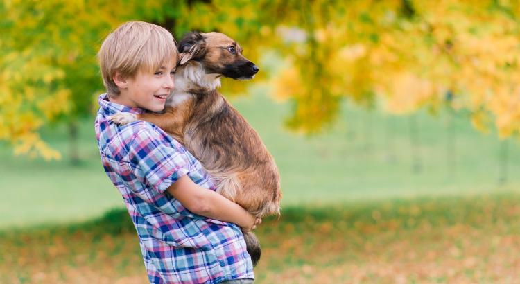 10 benefícios dos animais de estimação para crianças